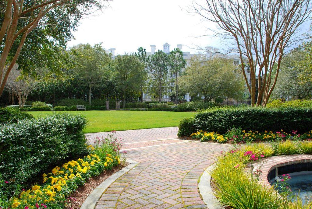 garden, walkway, sidewalk-646942.jpg